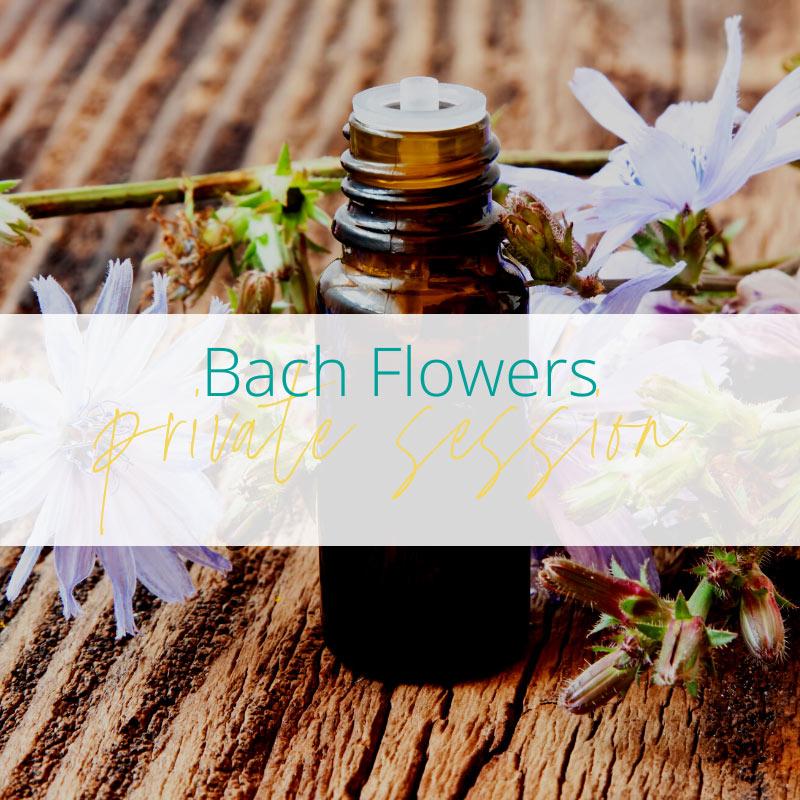 Bach Flowers at Joanne Sumner Wellbeing