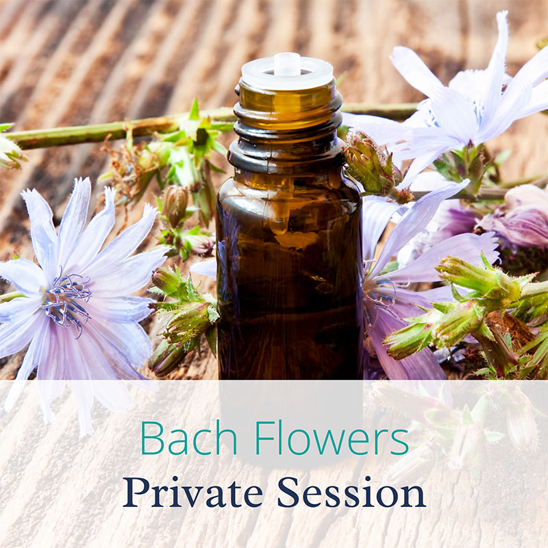 Bach Flower Private Session at Joannhe Sumner Wellbeing