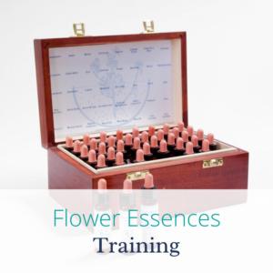 Flower essences training with Joanne Sumner Wellbeing